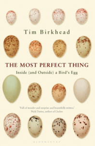 Tim Birkhead The most perfect thing