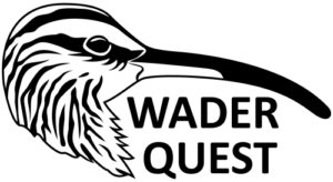 Wader-Quest-small-1