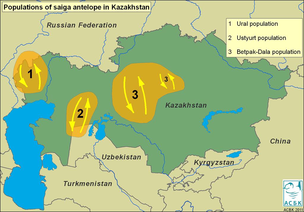 Saiga distribution map