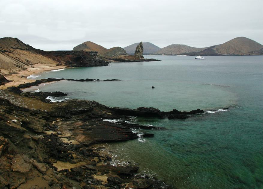 Galapagos coast World Water Day talk: Wildlife