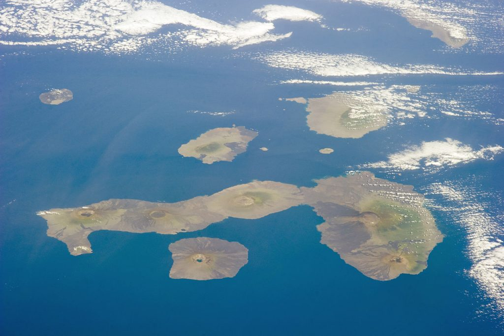 Galapagos Islands World Water Day talk: Wildlife