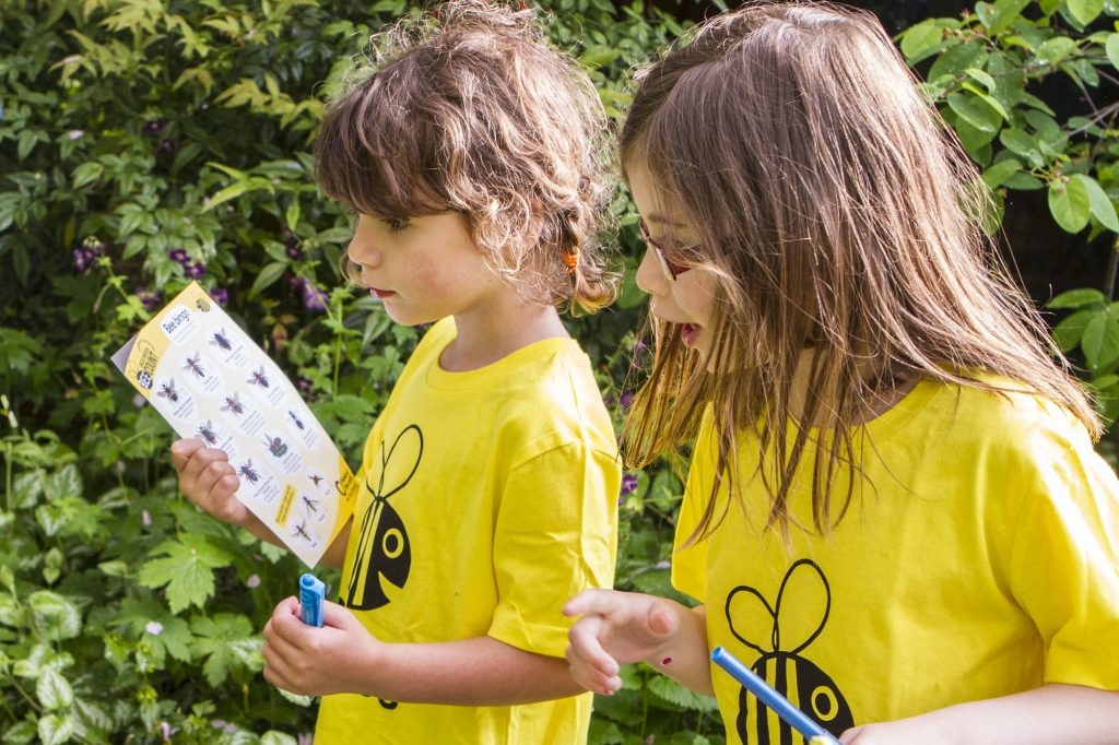 Family bee spotting - Great British Bee Count
