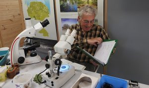 Weeting BioBlitz