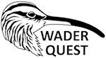 Wader Quest link