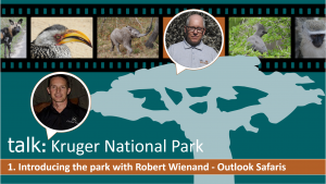 Link to Kruger National Park – Introducing the Park interview
