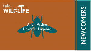 Wildlife Newcomers - Hoverfly Lagoons